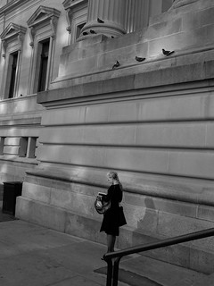A Lady and Pigeons , The Met, New York, 2009