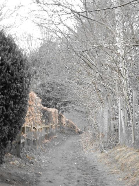 Tangley Way
