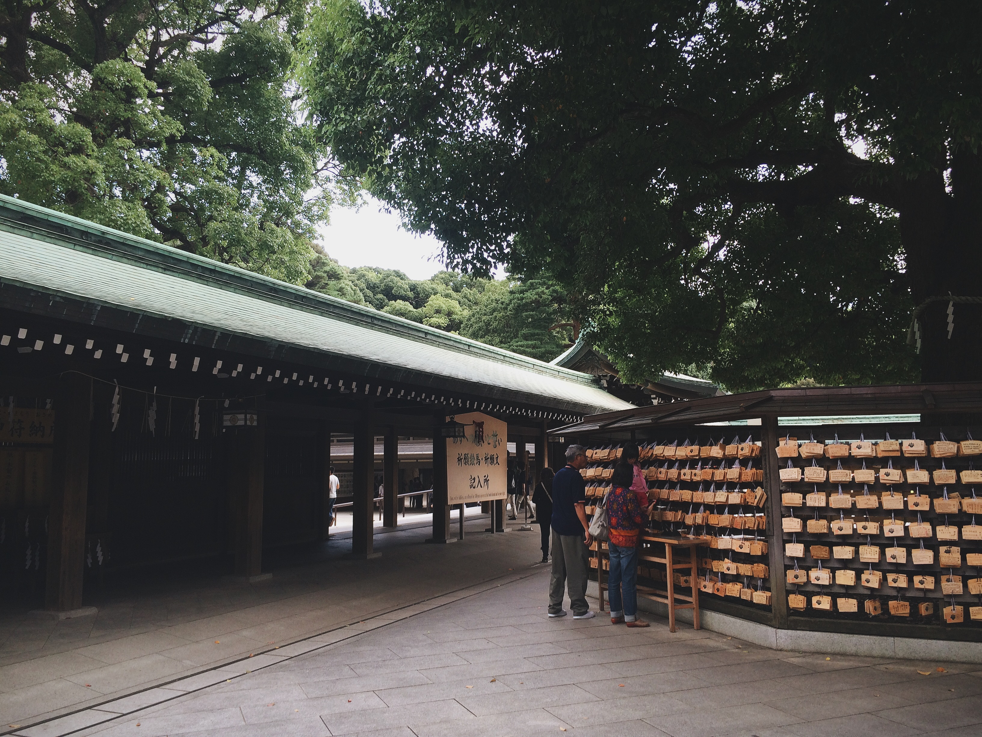 Meiji Shrine, Meiji Jingu, Tokyo, Japan, Travel, Asia, Nature, Bramble and Thorn