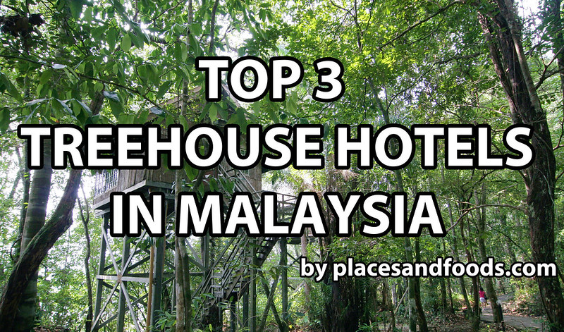 top three treehouse in malaysia large