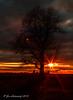 Sunset on 65