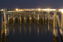 Portland Pier Piles