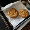 GF chocolate chip cookies with protein  power