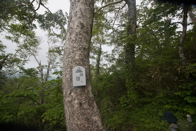 20150615-北海道羊蹄山(3日目)-0181.jpg