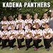 Far East 2014 Softball Kadena Panthers Team Photo