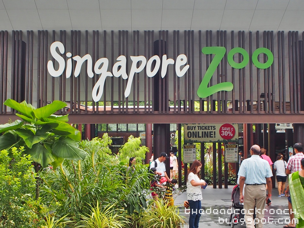 marketing mix singapore zoo Essays - largest database of quality sample essays and research papers on taronga zoo s marketing mix.