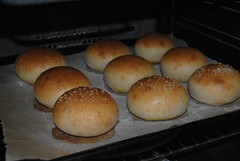 Sandwich or Hamburger Sourdough Buns