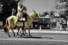 Lady on a Mule