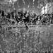 splash by Stephan Harmes