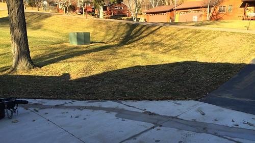 No more snow! 71/365