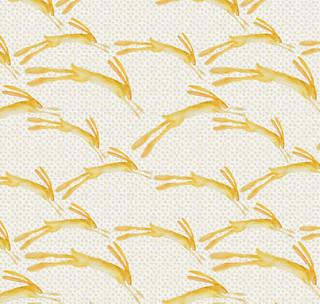 desert rabbit detail