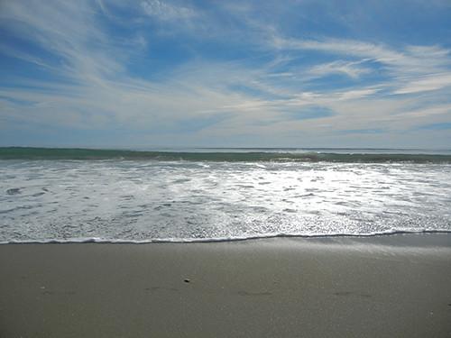 DSCN1916 Seascape Beach in Aptos, March 2015