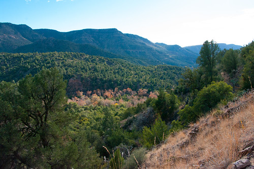 Camp Wood Az Elevation : Elevation of pine az usa topographic map altitude