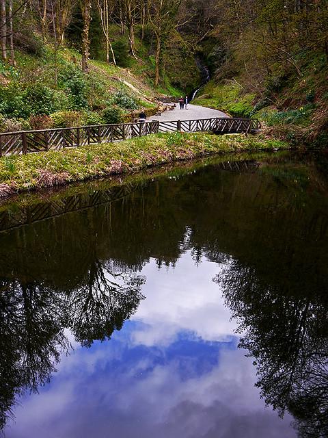 photo - Pond & Waterfall, Glengoyne Distillery