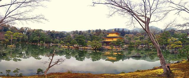 Golden Palace Panorama