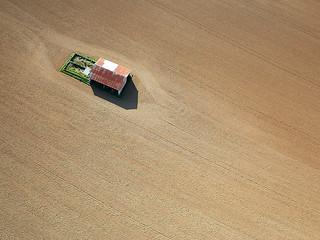 La petite maison dans le semis (Calvados-FR)