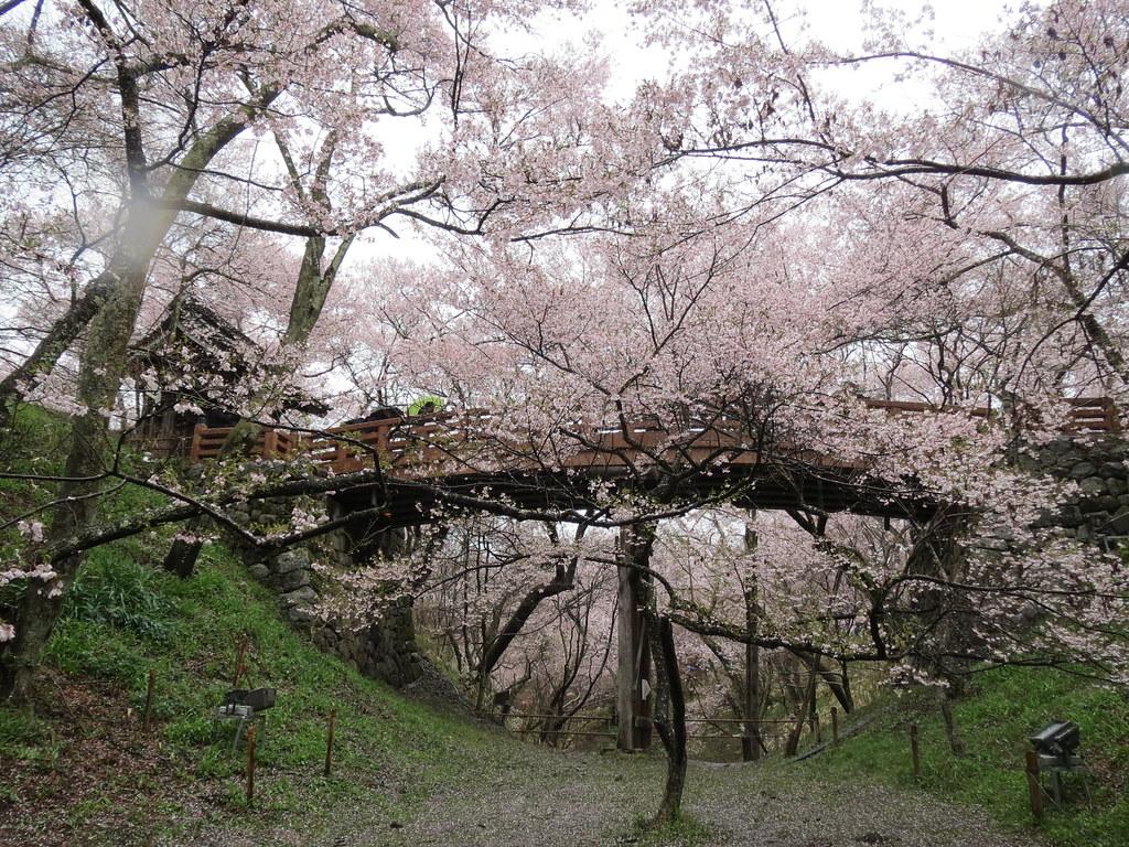 Takato Castle Ruins Park