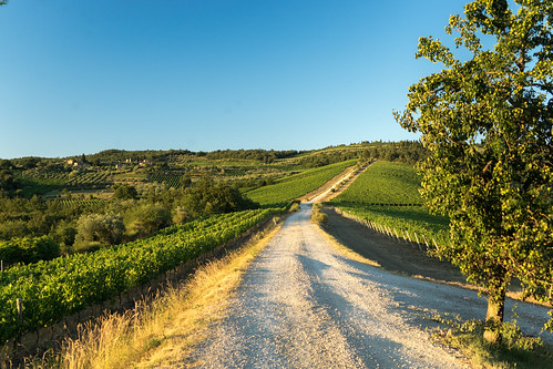 Tuscan road | by bawish