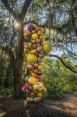 Chihuly and the spanish moss.