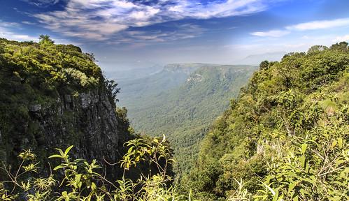 southafrica mpumalanga godswindow lowveld escarpment blyderivercanyon graskop