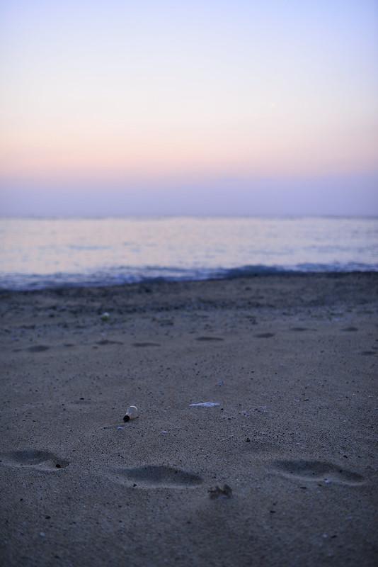 用海岸の夜明け
