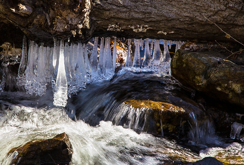 ice nature water forest river spring hiking icicles 2015 harrimanstatepark harrimanpark strangeicicle