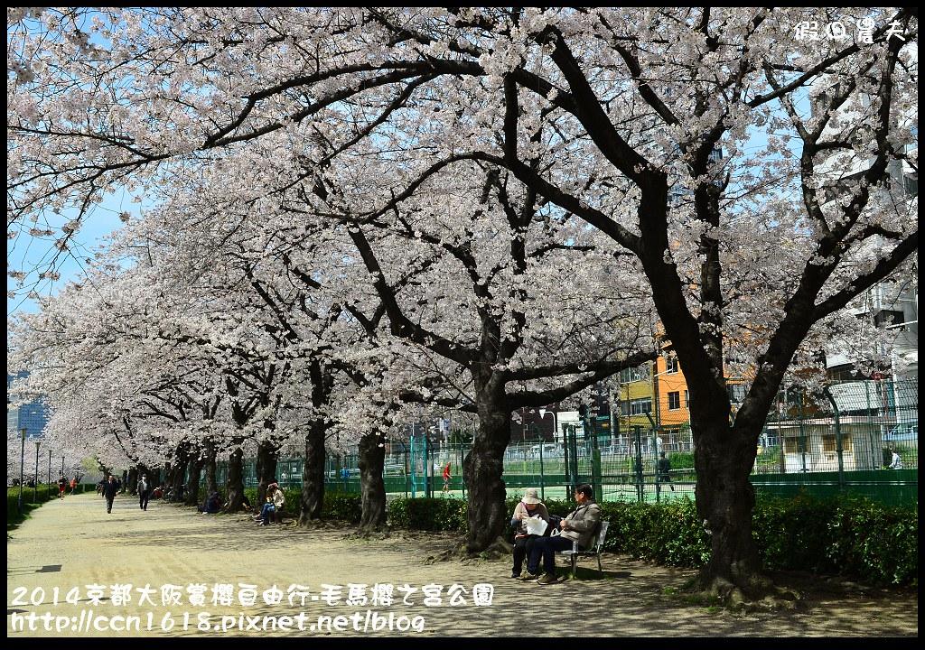 2014京都大阪賞櫻自由行-毛馬櫻之宮公園DSC_2090