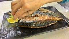 animal(0.0), mackerel(0.0), trout(0.0), pacific saury(0.0), sauries(0.0), forage fish(0.0), oily fish(0.0), sardine(0.0), milkfish(0.0), smoked fish(1.0), fish(1.0), fish(1.0), seafood(1.0), food(1.0), dish(1.0),