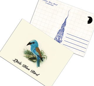 Little Blue Bird - A31