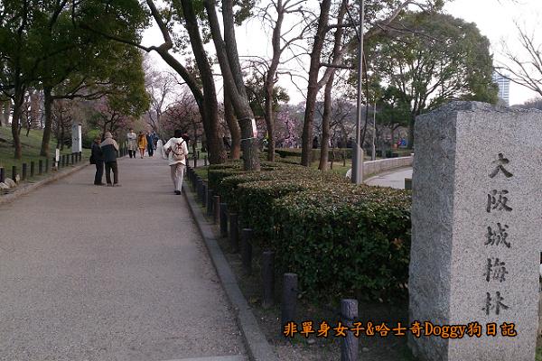 日本大阪城公園梅林城天守閣3D光之陣03