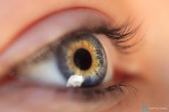 Ojos / Eyes