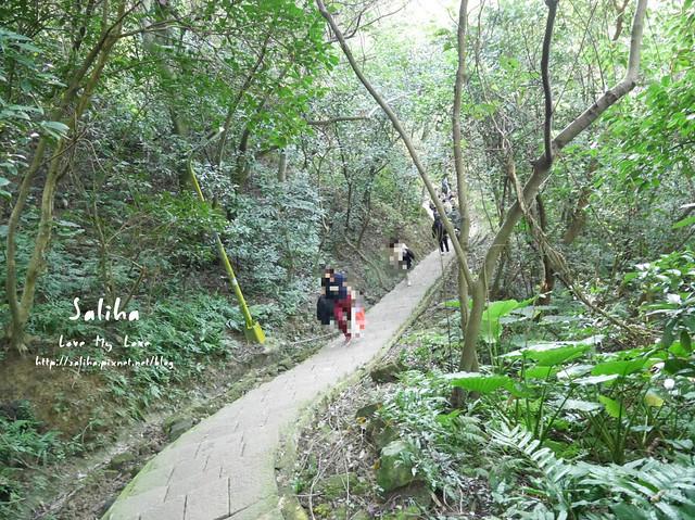 台北登山爬山象山步道 (9)