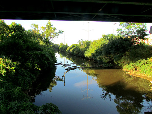 illinois canals il lateafternoon willowsprings imcanal chicagohistory illinoismichigancanal underneathwillowspringsrd
