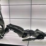 Bjork robots