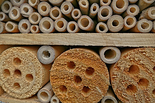 Insect Hotel - Insectenhotel (close-up)