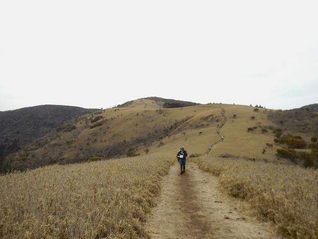 IZU TRAIL Journey