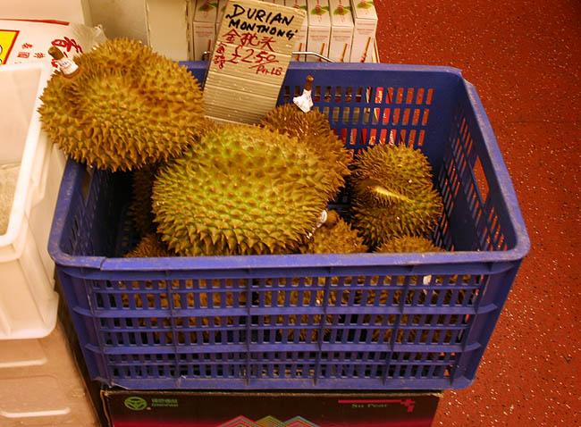 Durian © Paco Bellido, 2006
