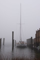 57rroberts posted a photo:Ragtime of Greensboro - sitting in a foggy dock in Beaufort, NC.