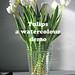 Tulips - a watercolour demo