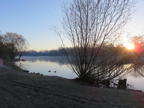 Nebel überm Teich