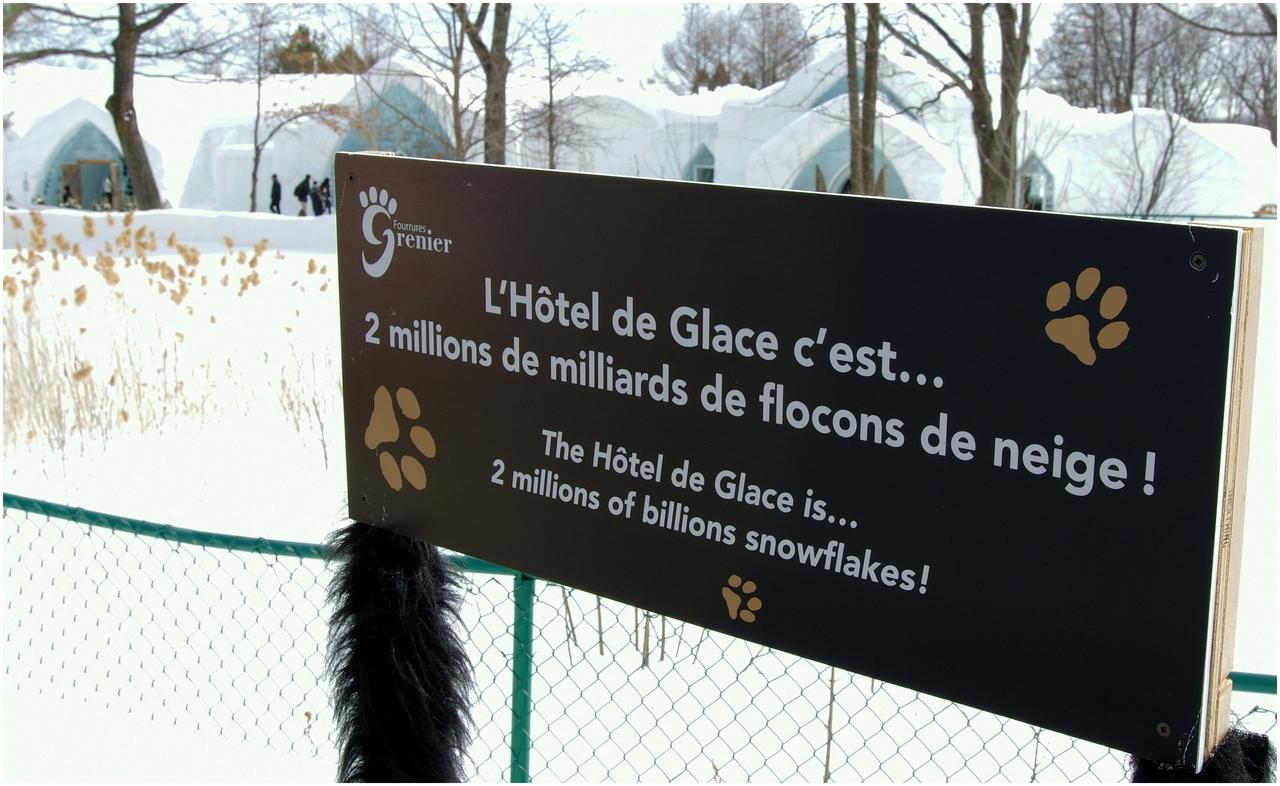 Hôtel de Glace 2015  (Québec- Canada) 16855535665_f150babcc6_o