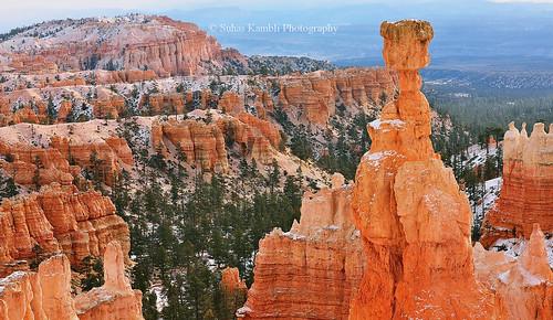 southwest fog sunrise landscape nationalpark beautifullight redrock brycecanyonnationalpark brycepoint beautifulmorning shadesofred fogandsun utahnationalparks nikond610 thorshammerwintermorning