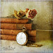.. books and roses .. by Kerstin Frank art