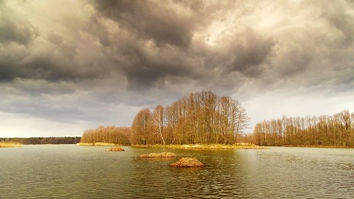 trees sky nature water weather clouds landscape island spring pond view poland polska lowersilesia miliczponds