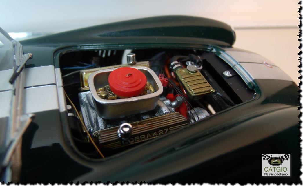 Shelby Cobra S/C - Revell - 01/24 - Finalizado 24/04 - Página 2 17225022986_0efdfcac3a_o