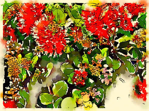 Bottle Brush Plant Edited in Waterlogue Photo App Using the 'Fashionable' Style