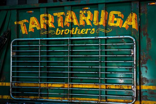 Tartaruga Bros
