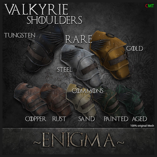 Valkyrie Add Picture