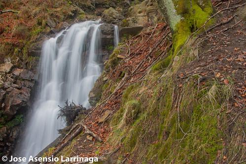 Parque Natural de Gorbeia  2015  #DePaseoConLarri #Flickr  -032