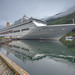 THE ORIANA REFLECTION by malcolm thorngate